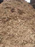 Bukva Piljevina Od Korišćenog Drveta Njemačka