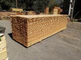 Comprar Tábuas (pranchas) Pinus - Sequóia Vermelha, Pinheiro Siberiano 22 mm