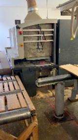 Woodworking Machinery - Used Raimann ProfiRip KR 310 Gang Rip Saws, 2004