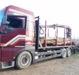 null - Road Freight from Romania Romania