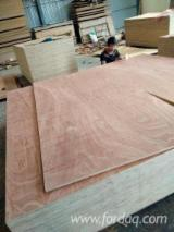 Sapele Commercial Plywood, 4-30 mm