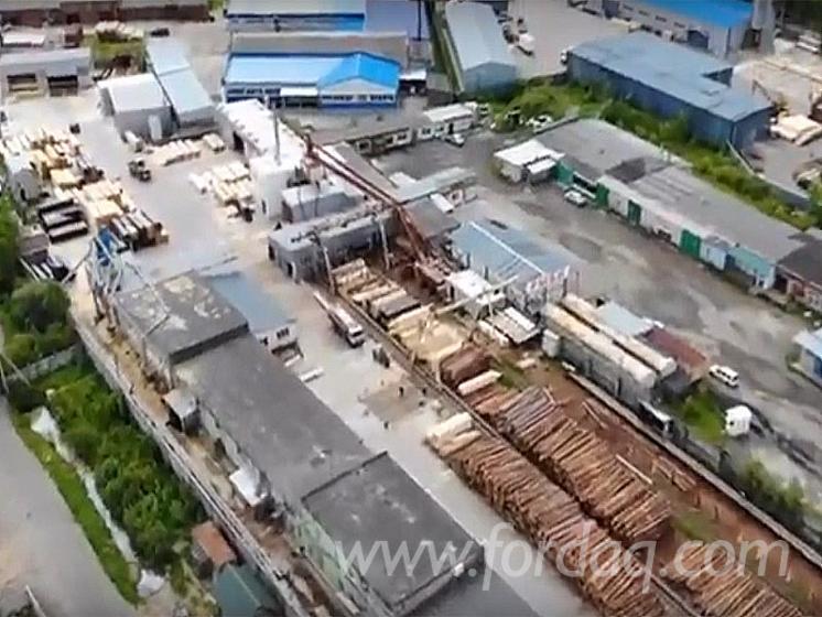 Vender-Vigas-Redondas-De-Constru%C3%A7%C3%A3o-Pinus---Sequ%C3%B3ia-Vermelha
