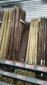 Find best timber supplies on Fordaq - Gia Tran Wood - Poles A/B, Diameter 1-8 cm