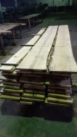 Hardwood Lumber Loose For Sale - Unedged Birch Timber, 25 mm Thick