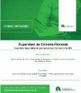 Supervisor de Colheita Florestal