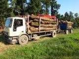 null - Kamion Za Prevoz Kraćih Stabala IVECO Polovna Rumunija