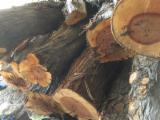 null - Juniper Industrial Logs, 80+ cm