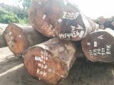 Vender Troncos Industriais Angelim, Maçaranduba Suriname