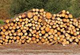 Spruce Industrial Logs