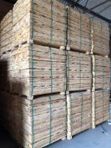 Embalagens de madeira Pinheiro Elliotis À Venda