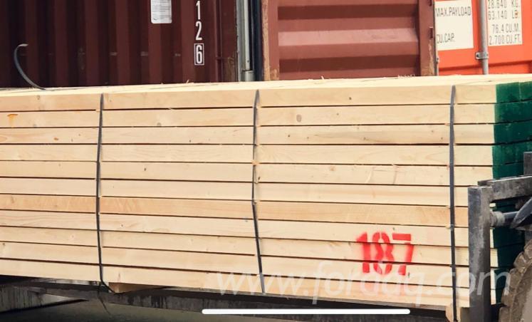 Vender Pinus - Sequóia Vermelha, Abeto - Whitewood 40; 62 mm Canadá