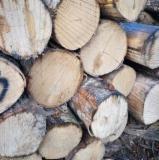 Schnittholzstämme, Schwarzerle, Grauerle, Espe, Aspe