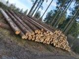 Vender Troncos Industriais Abeto - Whitewood Alemanha NRW, Niedersachsen Und Brandenburg
