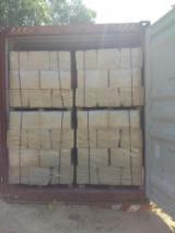 Vender Lascas Pinus - Sequóia Vermelha Ucrânia