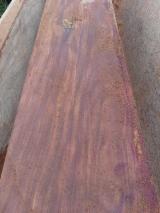 Balsamo Veneer Logs, 40-70 cm
