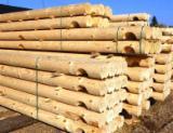 Vender Madeira Redonda De Formato Cónico Pinus - Sequóia Vermelha, Abeto - Whitewood Rússia Kurgan Region