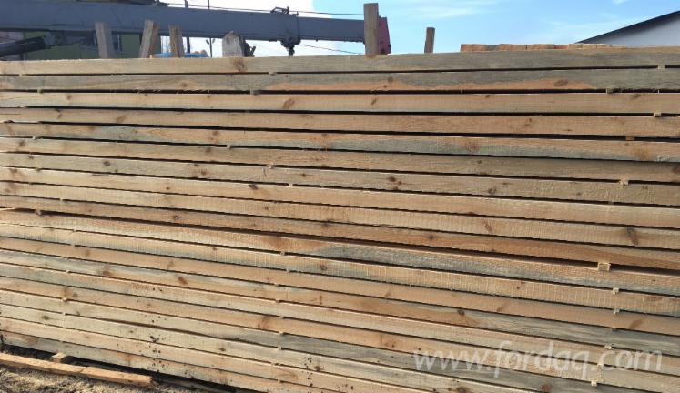 Vender Pinus - Sequóia Vermelha 62 mm