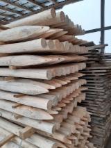 Pine Poles, diameter 75-100 mm