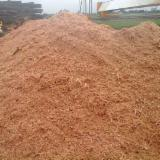 木芯片 – 树皮 – 锯切 – 锯屑 – 刨削 木材锯屑 苏格兰松