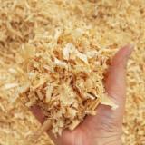 Best Wood shaving for Animal Bedding