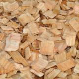 木芯片 – 树皮 – 锯切 – 锯屑 – 刨削 锯木厂生产之木片 苏格兰松