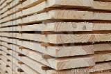 Vender Pinus - Sequóia Vermelha 44-88 mm