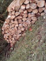 Balsa Wood Round Logs