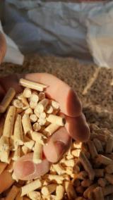 Vender Pellets De Madeira Abeto - Whitewood, Pinus - Sequóia Vermelha Belorussia