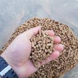 null - Ich werde Pellets aus Fichte verkaufen, 24-720 Tonnen / Monat