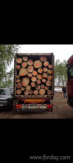 Siberian-Spruce-Peeling-Logs