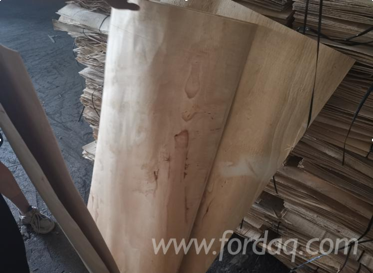 Rubberwood-Rotary-Cut-Veneer