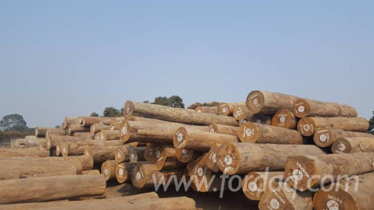 Vend-Grumes-De-Sciage-Eveuss-R%C3%A9p-D%C3%A9m-Congo