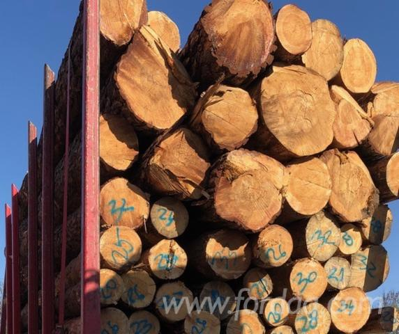 Buying-Fresh-Red-Pine-Logs