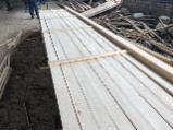 null - Thermo Treated 15-75 mm Kiln Dry (KD) Pine - Scots Pine Planks (boards) from Russia, Кострома