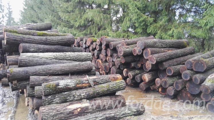 Black-Walnut-Sawn-Logs--22-30