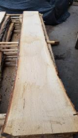 null - Tarcica nieobrzynana - DĄB * Eichen Schnittholz - Oak lumber - Bois de sciage de chene