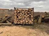 null - Selling beech and oak firewood