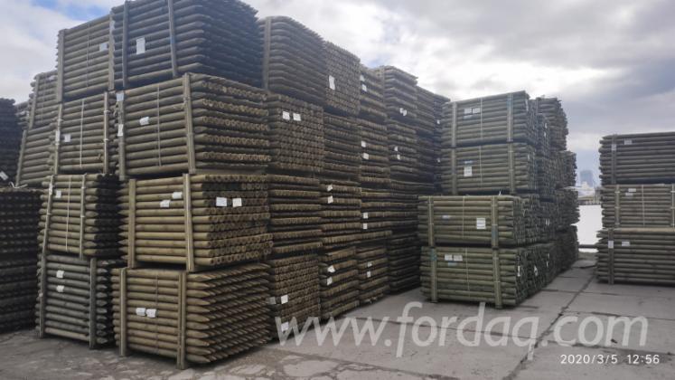 Poles--Ladin---Whitewood--%C3%87am---Redwood