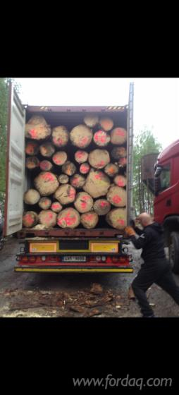 Spruce-Pelling--Logs