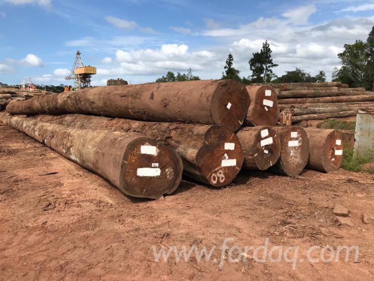 Buying-Angelim-Pedra-Saw-Logs