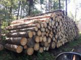 null - 锯木