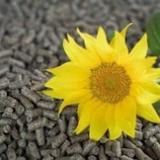 null - Sonnenblumen-Pellets 8 mm