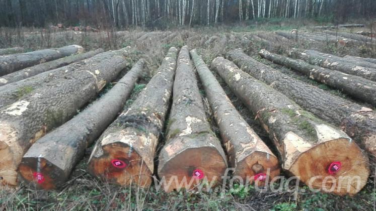 White-Ash-Logs