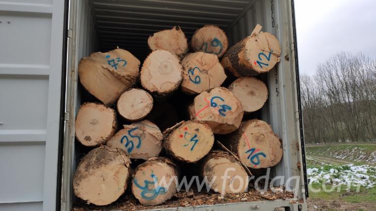 White-Ash-Saw-Logs--China-Export-Permission--AB-Quality