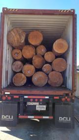 null - Cumpărăm Bustean Industrial Southern Yellow Pine