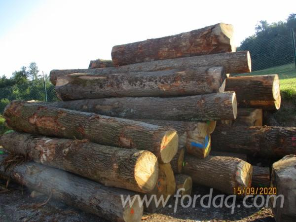 Oak-Sawn-Logs