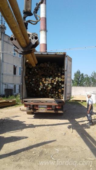 Pine-Spruce-Poles