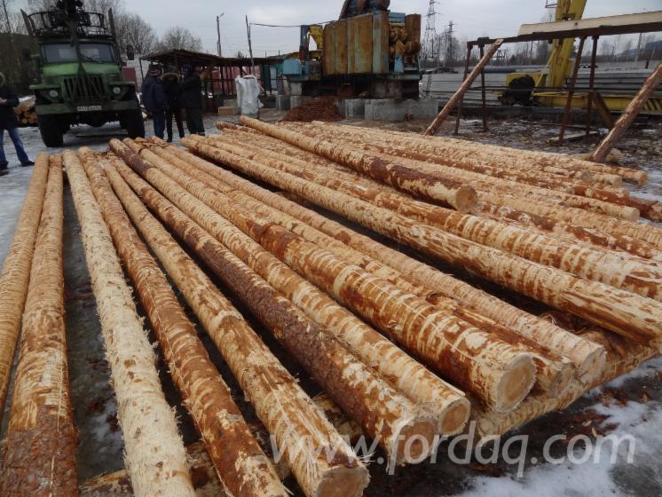 Vender-Madeira-Redonda-De-Formato-C%C3%B3nico-Pinus---Sequ%C3%B3ia-Vermelha-R%C3%BAssia