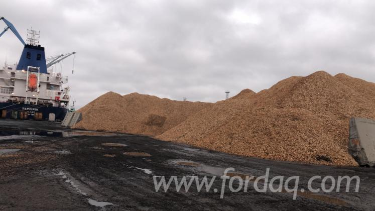 Spruce-Pine-Wood-Chips-for