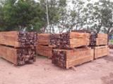 null - Tipuana Tipu KVH Structural Timber for Sale, 10+ cm Thick